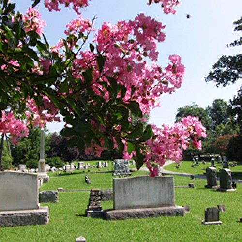 History is buried here: A Group Tour Itinerary of Ivy Hill Cemetery